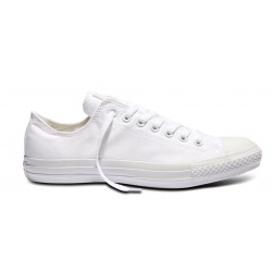 CONVERSE, Chuck taylor all star seasonal ox, White monochrome