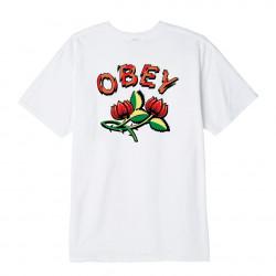 OBEY, Obey briar, White
