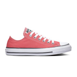 CONVERSE, Chuck taylor all star seasonal color ox, Strawberry jam